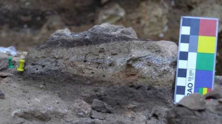 Oldest Human Poop Tells Us What Neanderthals Ate | IFLScience