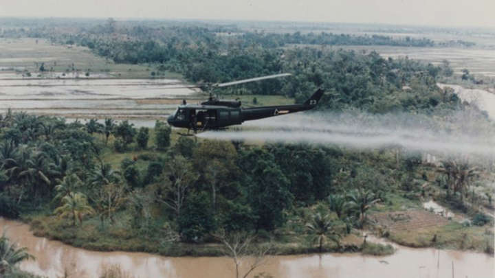https://www.iflscience.com/environment/agent-orange-continues-to-haunt-vietnam/