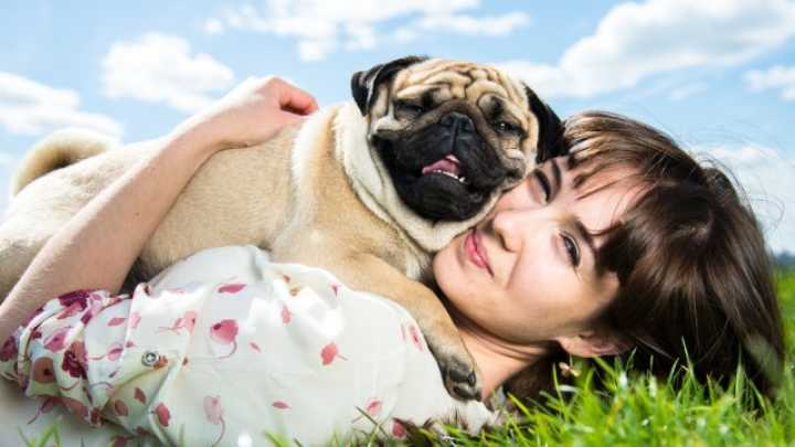 Why You Should Stop Hugging Your Dog If You Really Love Them